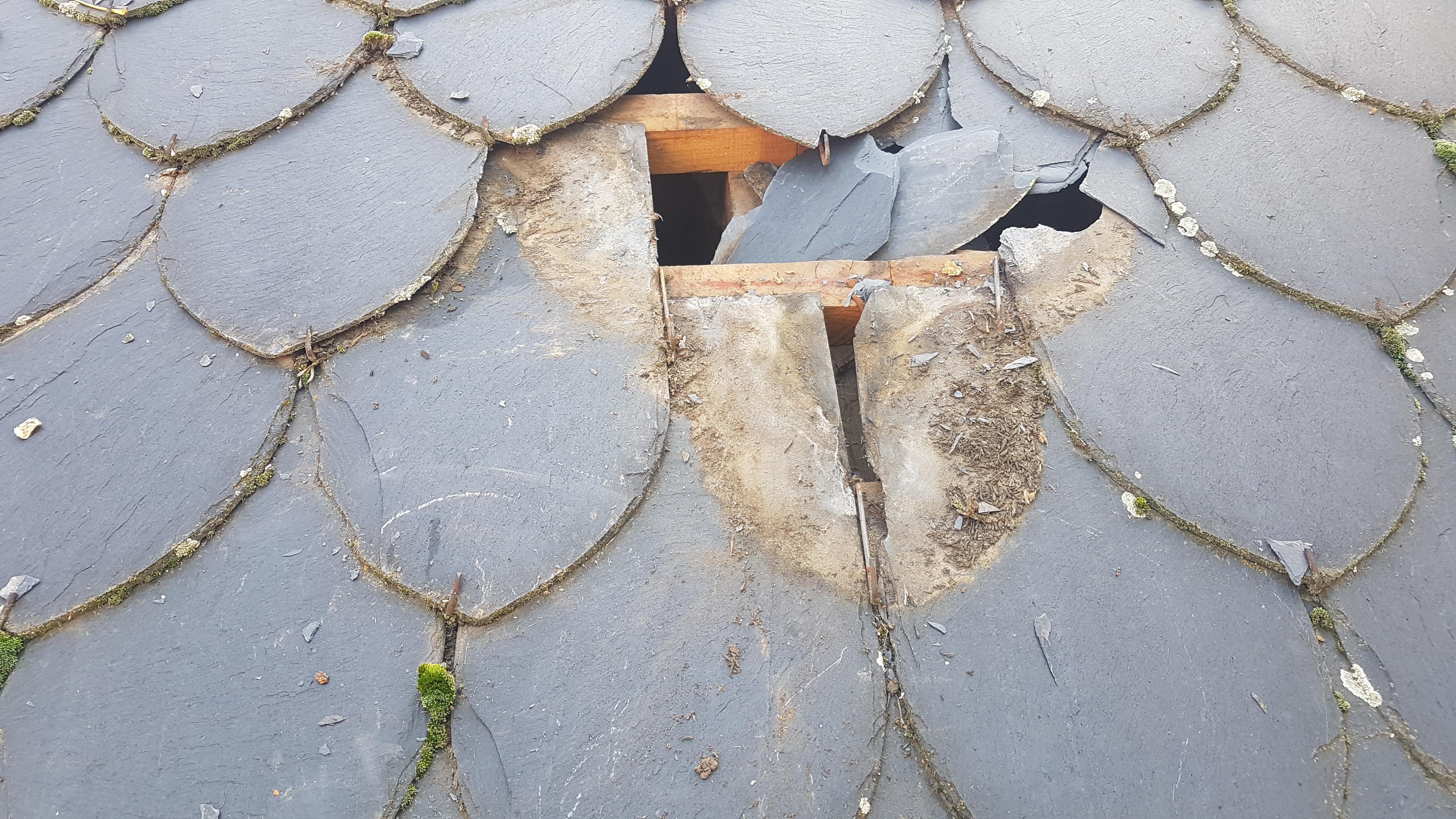 reparación de tejados de pizarra ramas